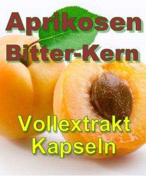 Aprikosen Bittern Kern