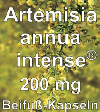 https://novoform-pharma.de/wp-content/uploads/2017/08/bild_artemisia_annua_intense_200mg.jpg
